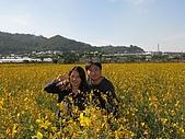 20091213新社花海+百菇莊....ㄏㄏ人比花嬌:調整大小IMG_7291.JPG