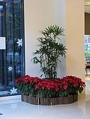 20091213裡冷谷野會館:調整大小IMG_7567.JPG