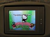 20080404日本關西櫻花滿開遊:在飛機上準備出發
