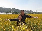 20091213新社花海+百菇莊....ㄏㄏ人比花嬌:調整大小IMG_7297.JPG