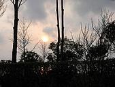 20090324Part-7日本戰國櫻花戀:調整大小IMG_3355.jpg
