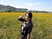 20091213新社花海+百菇莊....ㄏㄏ人比花嬌:調整大小IMG_7252.JPG