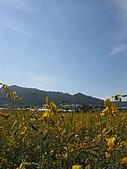20091213新社花海+百菇莊....ㄏㄏ人比花嬌:調整大小IMG_7301.JPG