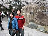 20080404日本關西櫻花滿開遊:進攻犬山城