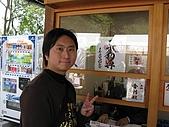 20080404日本關西櫻花滿開遊:銀格寺