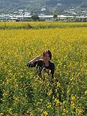 20091213新社花海+百菇莊....ㄏㄏ人比花嬌:調整大小IMG_7256.JPG