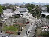 20080404日本關西櫻花滿開遊:犬山城--進入天守閣--最頂端