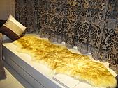 20081226(part1)愛窩大功告成:客廳臥榻上面家了羊毛毯