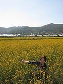 20091213新社花海+百菇莊....ㄏㄏ人比花嬌:調整大小IMG_7261.JPG