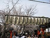 20080404日本關西櫻花滿開遊:2