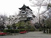 20080404日本關西櫻花滿開遊:犬山城