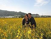20091213新社花海+百菇莊....ㄏㄏ人比花嬌:調整大小IMG_7285.JPG