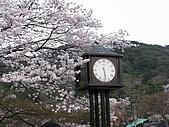 20080404日本關西櫻花滿開遊:八坂神社-- 四面鐘