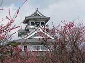 20090324Part-7日本戰國櫻花戀:調整大小IMG_3481.jpg