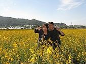 20091213新社花海+百菇莊....ㄏㄏ人比花嬌:調整大小IMG_7286.JPG