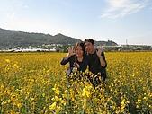 20091213新社花海+百菇莊....ㄏㄏ人比花嬌:調整大小IMG_7287.JPG