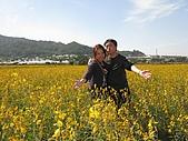 20091213新社花海+百菇莊....ㄏㄏ人比花嬌:調整大小IMG_7288.JPG