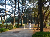 中央大學:DSC01060.JPG