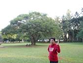 中央大學:DSC01054.JPG
