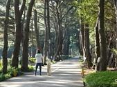 中央大學:DSC01526.JPG