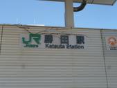 茨城櫻花:P1070790.JPG