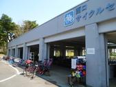 茨城櫻花:P1070823.JPG