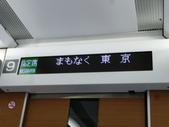 茨城櫻花:P1070844.JPG