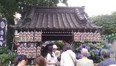 東京紫陽花:IMAG1452.jpg