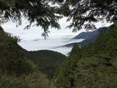 2020太平山:IMG_2763.jpg