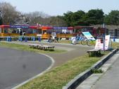 茨城櫻花:P1070801.JPG