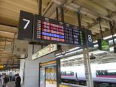 茨城櫻花:P1070751.JPG
