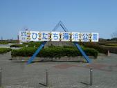 茨城櫻花:P1070836.JPG