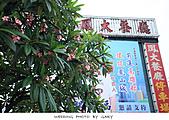 20100717歸寧照片:歸寧照片0002.