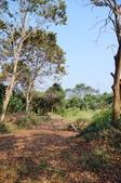 莊嚴聖境:安般禪園的印度紫檀25581206.jpg