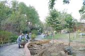 法師生活:25580117法師將妙覺園的樹木重新栽種.JPG