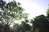莊嚴聖境:淨土的輝光_07.JPG