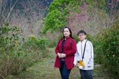 110年2月14日【花蓮】探訪樹湖櫻花:_1070056.jpg