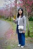 110年2月14日【花蓮】探訪樹湖櫻花:_1070064.jpg