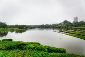 109年12月12日【宜蘭】雨中漫步,羅東運動公園:_1060915.jpg