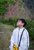 110年2月14日【花蓮】探訪樹湖櫻花:_1070058.jpg