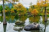 109.11.29【花蓮】新雨過後,松湖驛站:_1060908.jpg