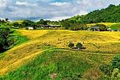 110年9月5日【花蓮】二度造訪六十石山:_1070314.jpg