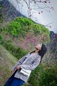 110年2月14日【花蓮】探訪樹湖櫻花:_1070054.jpg