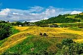 110年9月5日【花蓮】二度造訪六十石山:_1070313.jpg