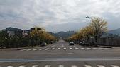 影子隨手拍:ES DESIGN 0972078716 廓子公園景賢大道