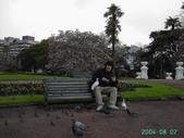 紐西蘭遊(04):1094081666.jpg