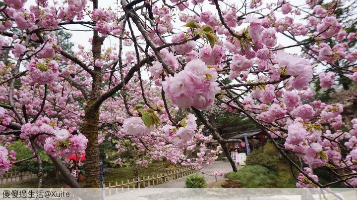 旅遊萬花筒的相簿:金澤B-02.jpg