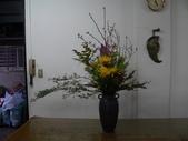 瓶花----多種插:P1430365 (800x600).jpg