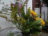 瓶花----多種插:P1430379 (800x600).jpg