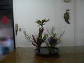 輕鬆的寫景花:P1430295 (800x600).jpg
